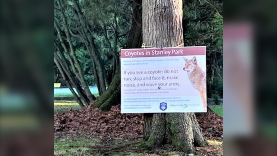 Coyote sign Stanley Park