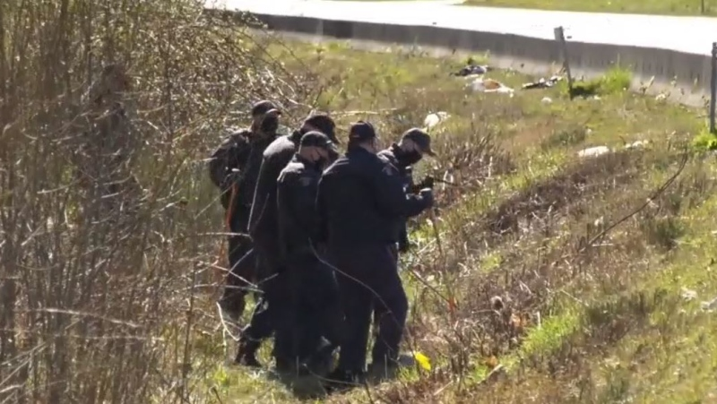 Police are seen searching an area off Nanaimo Parkway: April 8, 2021 (CTV News)
