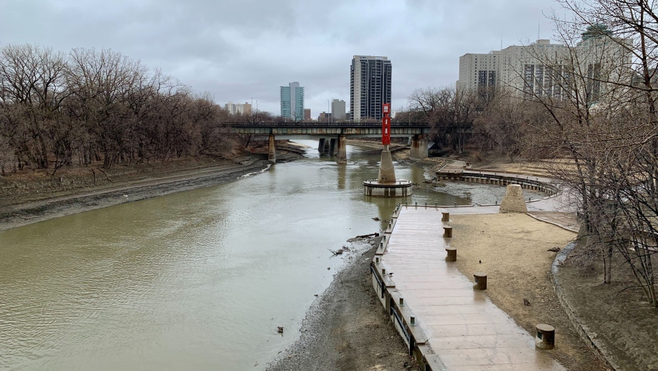 The Assiniboine River pictured on April 8. The flow rate is lower than the yearly average according to the province. (Source: Scott Andersson/CTV News)