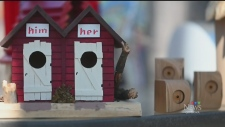 Almonte's hottest real estate? Birdhouses