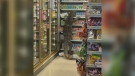 Enormous monitor lizard climbs shelf
