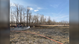 A brush fire forced the brief closure of Highway 416 in Ottawa's south end Friday afternoon. (Photo courtesy: Ottawa Fire Service)