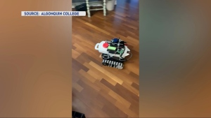 Algonquin College students have designed this self-driving robot that could de-ice a driveway or fertilize the lawn. (Photo courtesy: Algonquin College / Brady MacDonald)