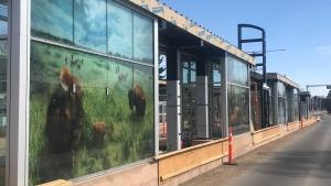 Public art in Edmonton's LRT. April 9, 2021. (Darcy Seaton/CTV News Edmonton)