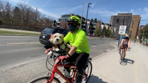 Kirk Parsons and his pup, Max, are taking a bike ride along the Rideau Canal pathway. (Tyler Fleming / CTV News Ottawa)