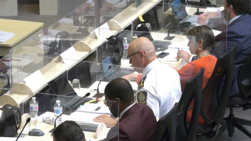Edmonton's police chief at a city council hearing on policing.