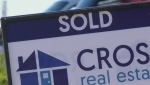 Saskatoon housing market red hot