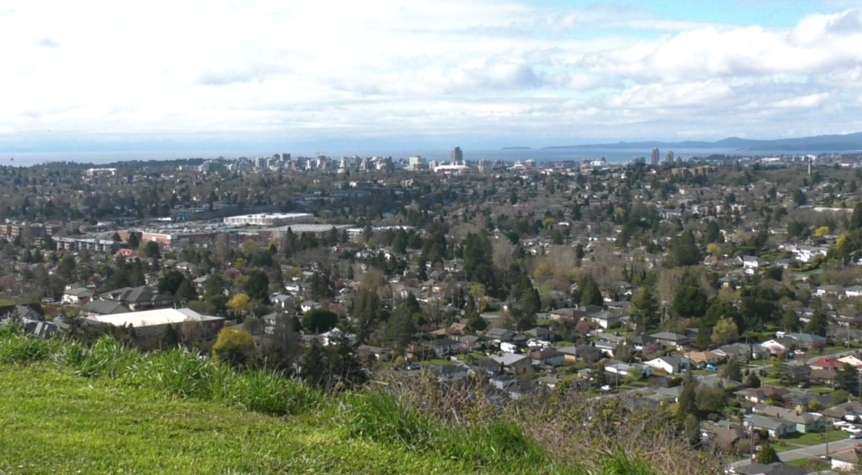 A shot of the region taken from Mt. Tolmie in Saanich. (CTV)