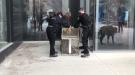 Injured wild turkey rescue downtown Winnipeg on Friday (Source: Facebook, Winnipeg Animal Services)