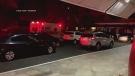 Hotel evacuated after report of shots fired