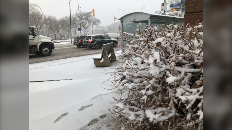 Parts of Manitoba have been hit with a spring storm on Monday, April 12, 2021. (Source: Michael D'Alimonte/CTV News)