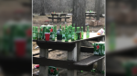 A photo shared on social media showing beer bottles left behind on picnic tables at Vincent Massey Park, April 11, 2021. (Source: @arnica246 / Twitter)