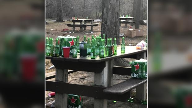 A photo shared on social media showing beer bottles left behind on picnic tables at Vincent Massey Park, April 11, 2021. (Source: @arnica246 / Twitter)