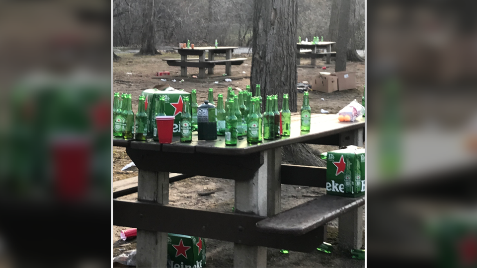 Vincent Massey Park beer bottles