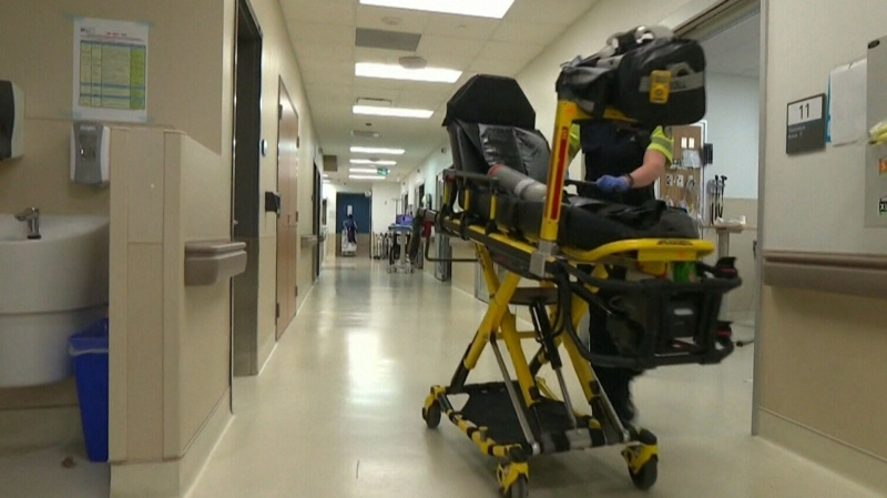 N.B. reports two new cases of different variant
