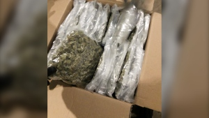 Three men from Ontario are facing several charges after RCMP seized nearly 4,000 lbs of marijuana near Moose Jaw. (Supplied: RCMP)