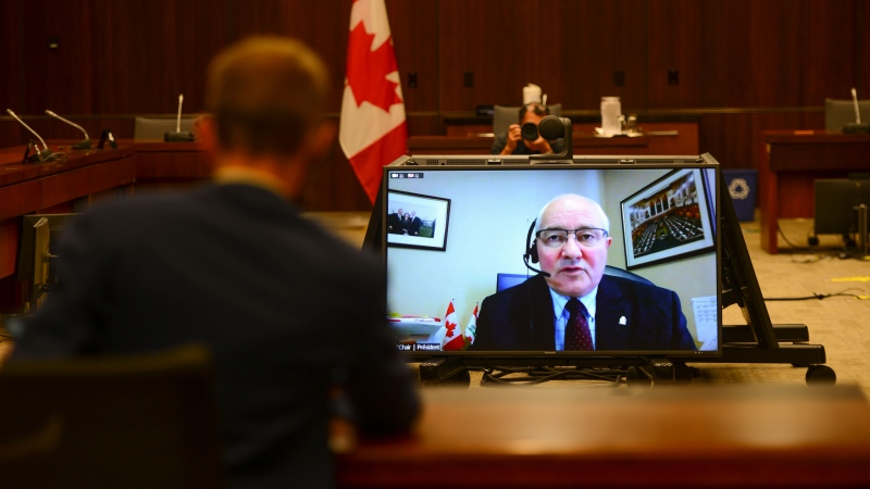 Committee Chair and Liberal MP Wayne Easter speaks via videoconference during a House of Commons finance committee in the Wellington Building on Thursday, July 30, 2020. THE CANADIAN PRESS/Sean Kilpatrick