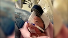 Hannah Kerr was born prematurely and remains in the neonatal ICU at Kingston General Hospital. Her father is raising money so that the hospital can by web cameras to allow families to see their little ones in the NICU any time of day. (Image courtesy of Pat Kerr)