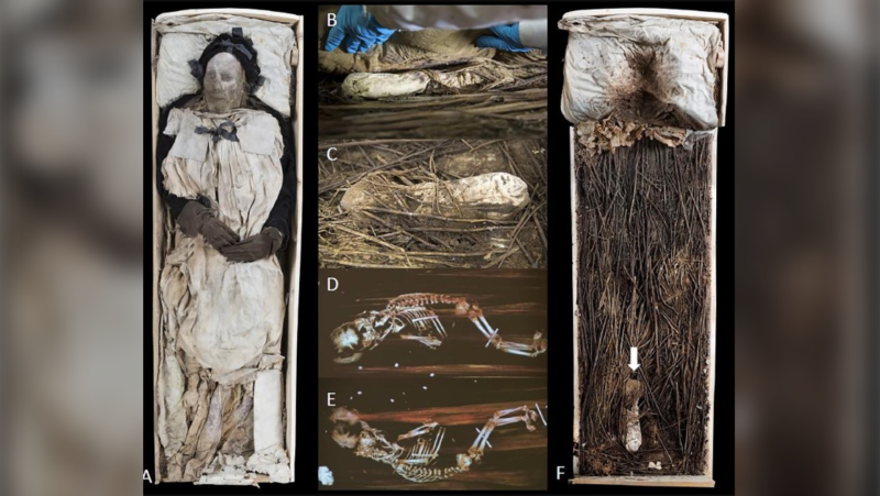 A composite image showing the bishop of Lund's remains, the bundle containing fetal remains, X-ray images of the fetal remains and the bishop's coffin. (Gunnar Menander/Lund University)