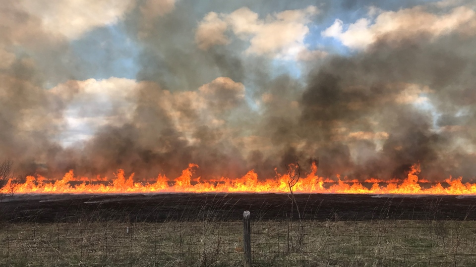 Officials carry out a controlled burn at the rare Research Reserve on April 14, 2021 (Dan Lauckner / CTV News Kitchener)