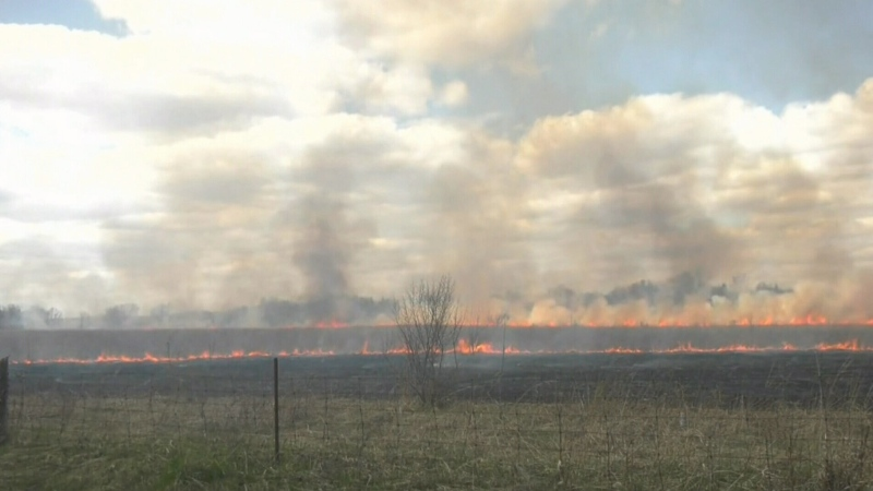 Prescribed burn of prairie land