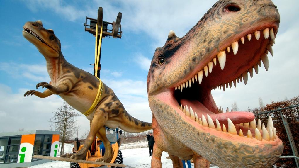 life-sized Tyrannosaurus rex models