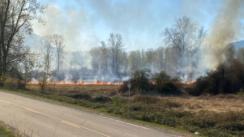 Chilliwack fire crews are at the scene of a large brush fire on Cannor Road near Highway 1. (CTV)