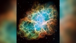 This mosaic image of the Crab Nebula through the lens of NASA's Hubble Space Telescope. NASA, ESA, J. Hester (Arizona State University via CNN)