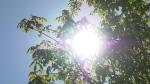sun heat sunshine summer temperatures