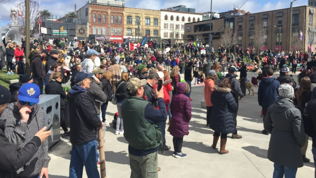 Hundreds gathered in downtown Barrie Saturday, fighting for civil liberties. (Roger Klein/CTV Barrie)