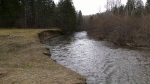Cape Breton man wants province to fix erosion