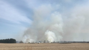 Edmonton fire have been on scene battling a grass fire since it's been reported at 12:58 p.m. Saturday (CTV News Edmonton/Galen McDougall).