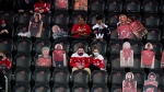 FILE - In this April 4, 2021, file photo, Washington Capitals fans sit among cutouts of New Jersey Devils fans as they watch the second period of an NHL hockey game between the Devils and the Capitals in Newark, N.J. (AP Photo/Frank Franklin II)