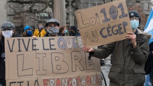 People take part in a demonstration outside McGill University in Montreal, Saturday, November 28, 2020, where they protested against government funding for infrastructure projects at two English-language educational institutions and also calling on the city of Montreal to set up a body to protect the French language.THE CANADIAN PRESS/Graham Hughes