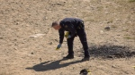 An officer places an evidence marker at the scene of a stabbing that took place in Comox Saturday night. (CTV)