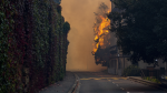A wildfire which began on Sunday on Cape Town's famed Table Mountain has destroyed several university campus buildings.
