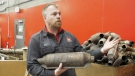 Catalytic converter thefts on the rise