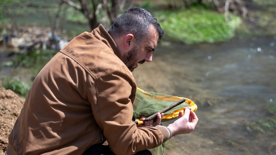 Halil Ibrahimi, 44, associate professor at the faculty of natural sciences at Pristina university, searches his net for insects near a polluted stream in Siceve, Kosovo, on Friday, April 16, 2021. (AP Photo/Visar Kryeziu)