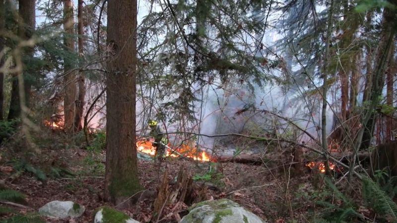 Crews battled a blaze on Burnaby Mountain near the Trans Mountain tank farm on April 19, 2021.