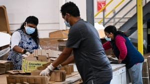 Workers manufacture partitions made from cardboard and chipboard material at TEC Business Solutions during the COVID-19 pandemic in Mississauga, Ont., on Wednesday, January 13, 2021. The company has made mask wearing and gloves mandatory along with providing hand sanitizing stations through out the factory. THE CANADIAN PRESS/Nathan Denette