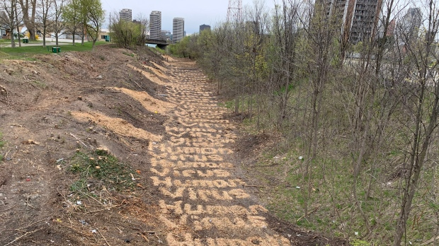 "The words ""Human Virus"" spelled out in wood chips at a former encampment where homeless people had stayed in Windsor, Ont. on Tuesday, April 20, 2021. (Chris Campbell/CTV Windsor)"