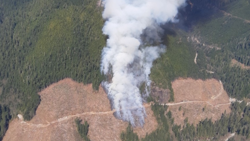 Six firefighters and two helicopters have been attacking the flames near Gold River, B.C. since early Tuesday morning. (Coastal Fire Centre)