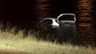 They were a little wet, but not seriously injured after a driver crashed into a storm pond near Stoney Trail in southeast Calgary Tuesday night.