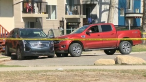 After striking the pedestrian, the truck continued across the grassy area and into a cul-de-sac where it collided with another vehicle.