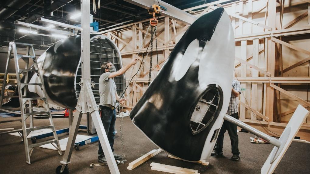 royal bc museum orcas