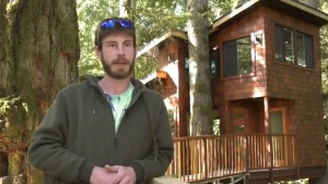 Island man builds incredible backyard treehouse