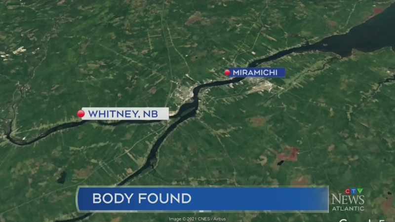 Body discovered in Northern New Brunswick