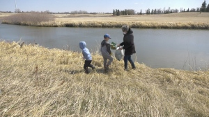 Ward 8 Councillor Shanon Zachidniak and her family clean up garbage in Regina for Earth Day. (Colton Wiens/CTV Regina)
