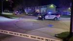 Police investigating a shooting on Overlea Court that sent two to hospital. (Terry Kelly/CTV Kitchener)
