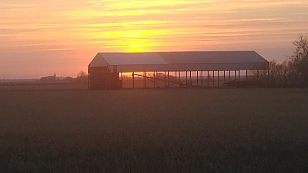 Prairie sunset. Photo by Brett Enns.